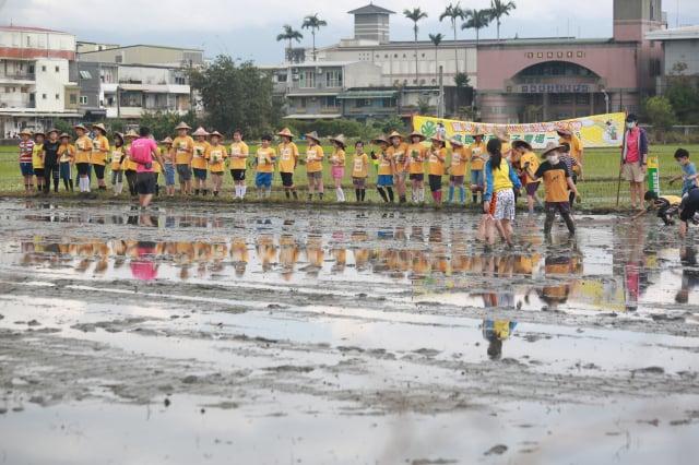竹林國小學童們,脫掉球鞋、捲起褲管來到田埂上,聽解說準備下田。