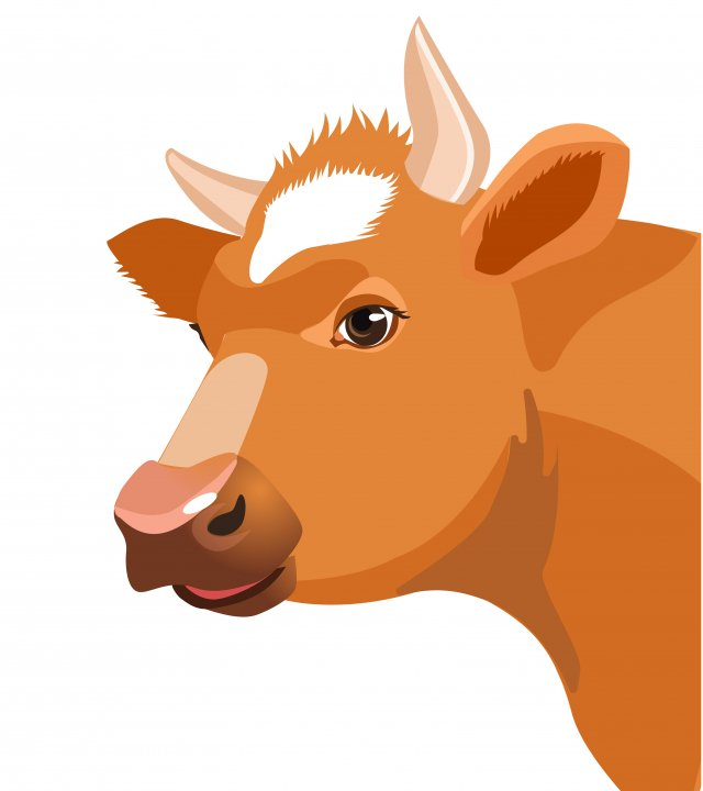 牛年話牛。(123RF)