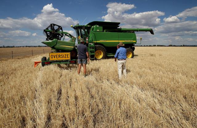 中共對澳洲大麥徵收報復性關稅,迫使澳洲農場開拓新市場。(GREG WOOD/AFP via Getty Images)
