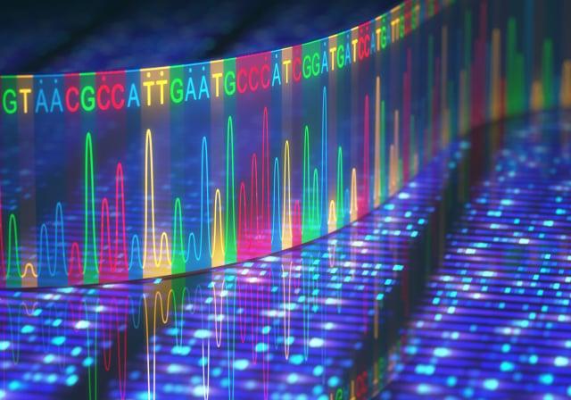人類基因組示意圖。(Shutterstock)