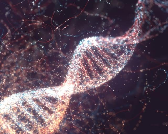 DNA示意圖。(Shutterstock)