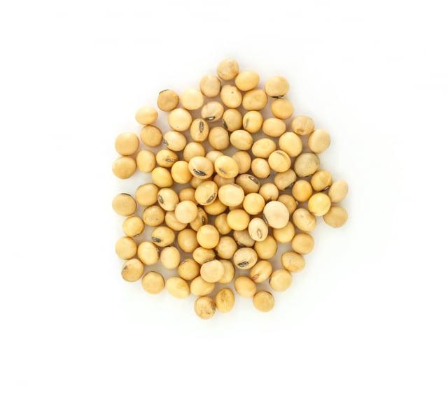 黃豆。(123RF)