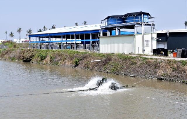 力佳綠能生技公司設置了淨水廠,淨化養殖魚塭的水質。