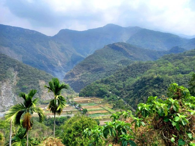 多納部落後山的耕地。