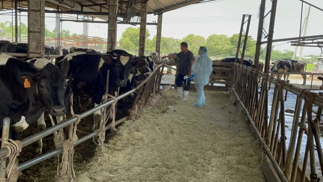 彰縣超前部署  成立牛結節疹應變中心。(彰化縣政府提供)