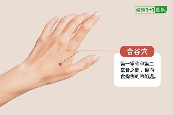 合谷穴位於第1掌骨和第2掌骨之間,偏向食指側的凹陷處。(健康1+1/大紀元)