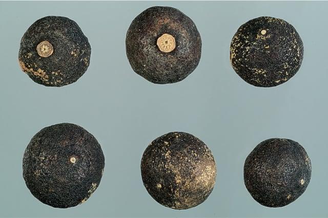 個青皮:青色類球狀,質地較粗糙,表面灰綠色。(張賢哲教授《道地藥材圖鑑》提供)
