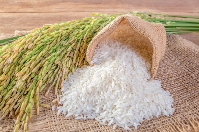 白米如果不小心放太久,沒有變質,仍可以食用,還是種中藥。(Shutterstock)