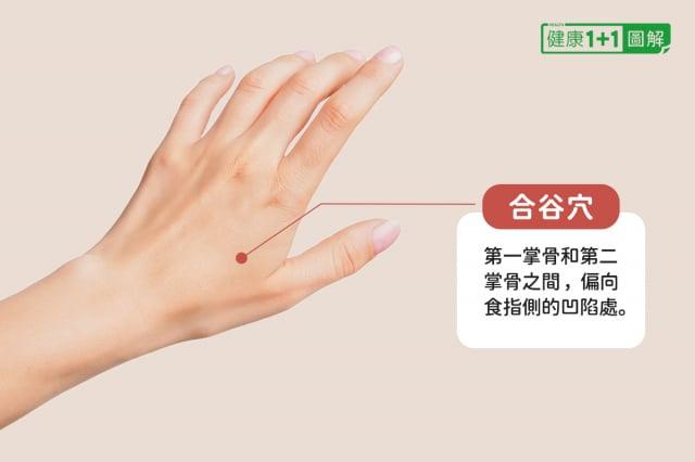 合谷穴位於第一掌骨和第二掌骨之間,偏向食指側的凹陷處。(健康1+1/大紀元提供)