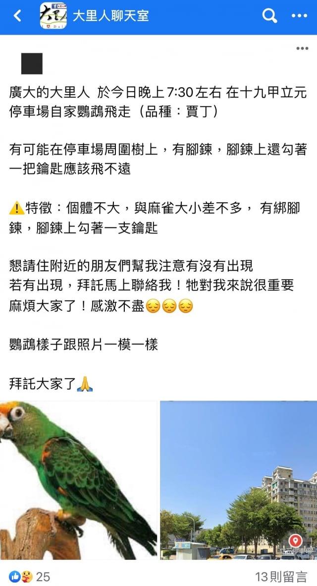 臉書社團「大里人聊天室」,失主陳先生貼文說,寵物鸚鵡飛走了!