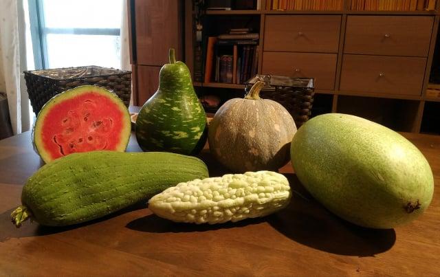 夏天也是各種瓜類的盛產季節。(攝影/楊子樊)