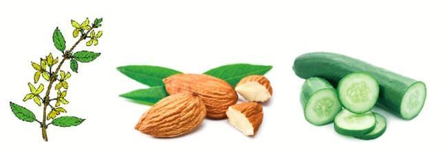 3個簡單小妙方:連翹,杏仁,黃瓜。(Shutterstock)