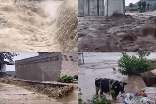 7月11日,河南焦作市因為暴雨,山洪爆發,丹河上游青天河水庫急洩洪,吞噬車子,沖毀房屋。(網路影片擷圖)