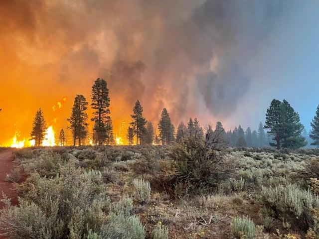 「靴筒大火」(Bootleg Fire)7月19、20日在美國奧勒岡州延燒。(USDA Forest Service via Getty Images)