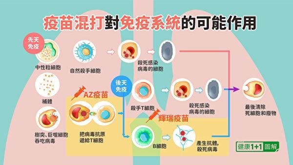 不同類型的疫苗,激發人體免疫力的方向不同。(健康1+1/大紀元)