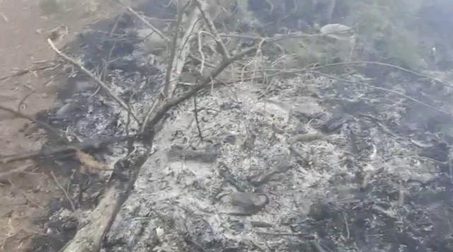 NCC前專門委員喬建中等人5月前往玉山登山,不慎造成八通關杜鵑營地附近林地發生森林火警。圖為失火時營火堆樣貌。(中央社)