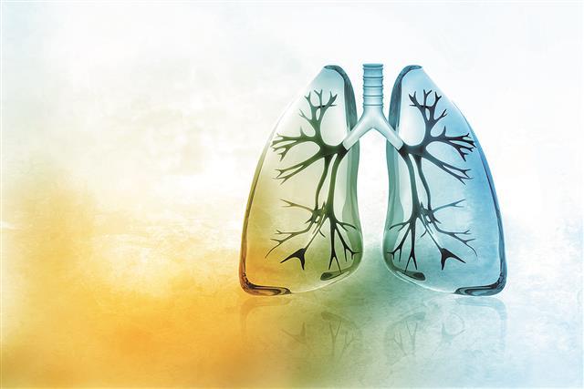 肺的功能,隨年齡而增加,約20~30歲即到頂,之後,開始下降。人體缺氧1~2分鐘,心臟隨缺氧而停止跳動,腦細胞因缺氧而昏迷。(123RF)