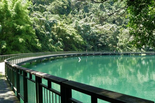 臨湖步道長1.5公里,環繞著日月潭湖水一路前行,可到達纜車站。(攝影/鄧玫玲)