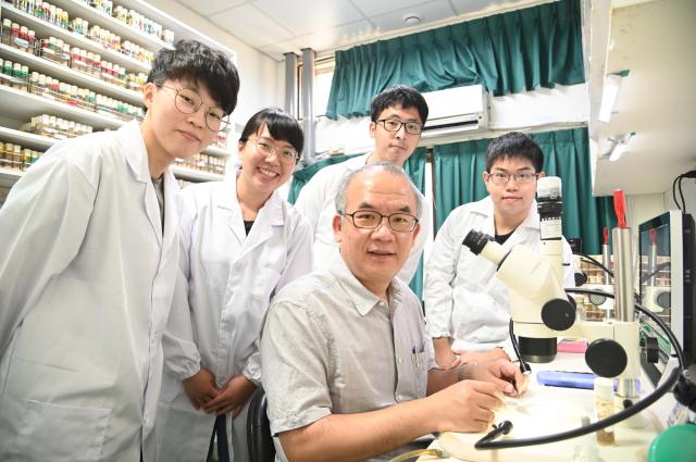 清華大學生物科技研究所教授桑自剛(右二)及其研究團隊透過果蠅研究解開細胞核大小調控機制之謎。(清華大學提供)