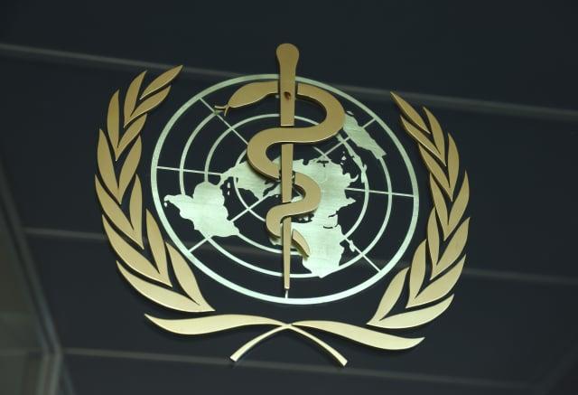 世界衛生官員認為,病毒可能將「一直留在這裡與我們同在」。(Sean Gallup/Getty Images)