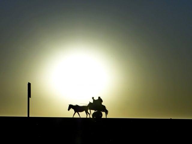 夕陽西下——衣索匹亞。(謝明景提供)