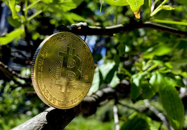 專家表示,他並不了解比特幣,但對於這項投資他持謹慎態度。(Edward Smith/Getty Images)