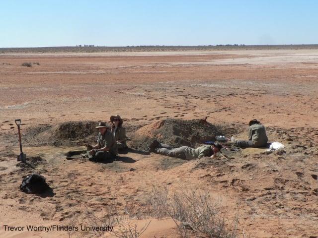 南澳大利亞平帕湖挖掘現場。(Trevor Worthy/Flinders University)